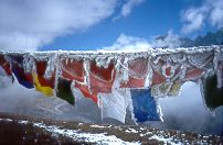 Prayer Flags with Frost